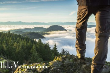 Adventure for Anyone: Top of Gowland on a guided hike by HikeVictoria.com