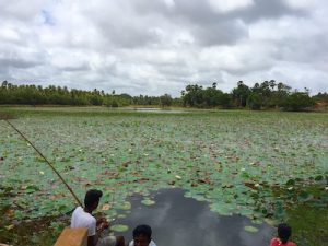 Local children fishing in village ponds on our journey to Anuradhapura, Sri Lanka.