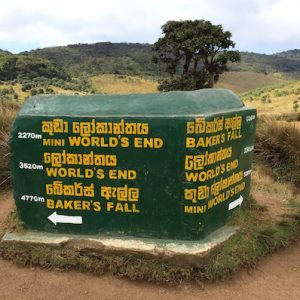 The start of the trail at Horton Plains National Park on our way to World's End, Sri Lanka.