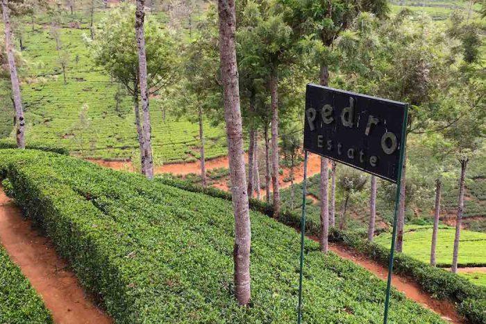 Sri Lankan Ceylon Tour