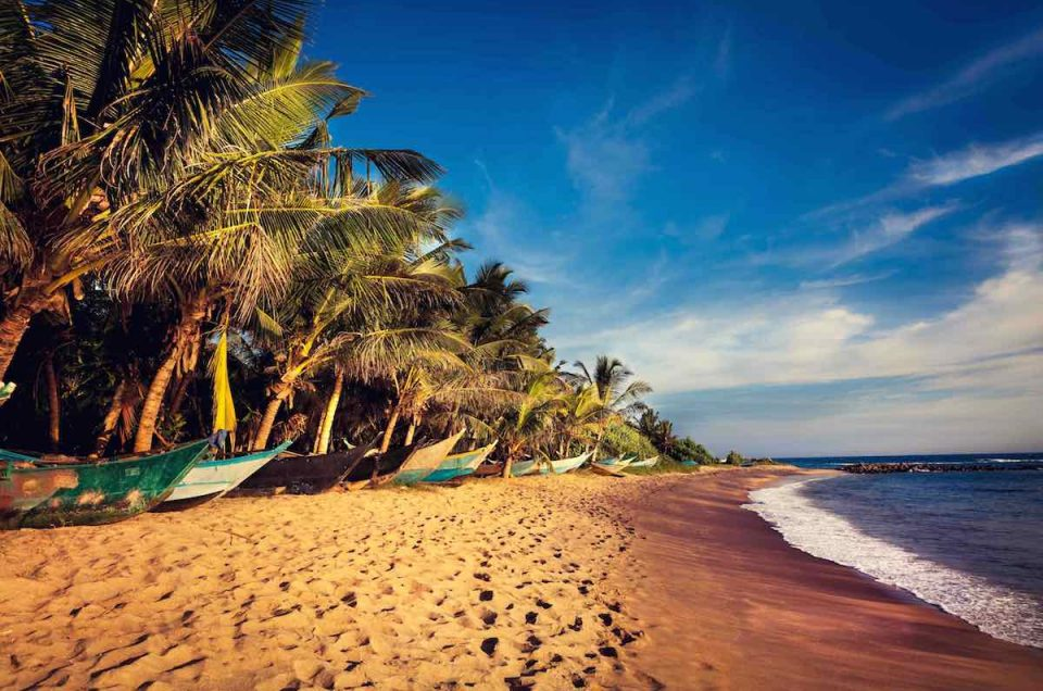 Mirissa - Sri Lanka's Favourite Beachside Village